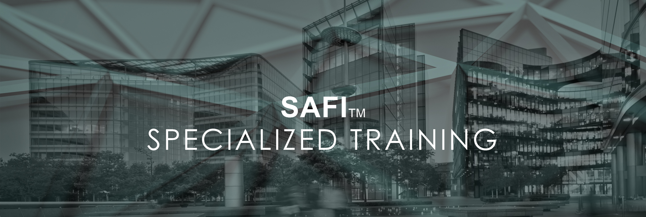 SAFI-TRAINING-3
